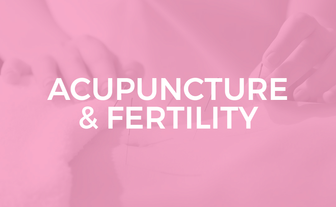 ACUPUNCTURE FERTILITY