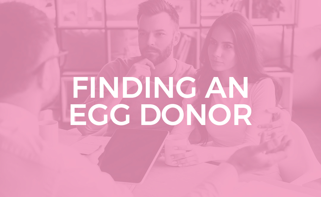 Finding an egg donor